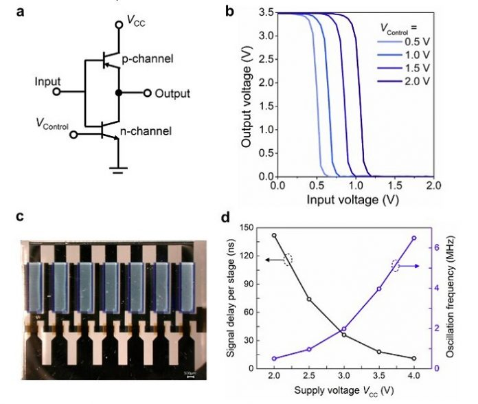 Researchers Realize Vertical Organic Permeable Dual-based Transistors for Logic Circuits