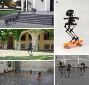 Caltech's bipedal robot walks, hops, flies, and skateboards
